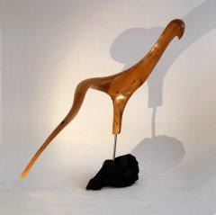 Oiseau Boomerang